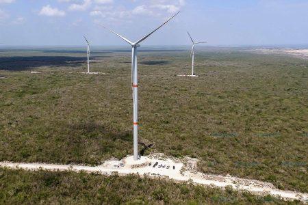 Mayas denuncian acoso de promotores de energías limpias