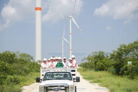 Ven graves irregularidades en parques eólicos y solares que autorizó Zapata Bello