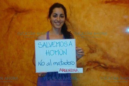 Extranjeros se unen a campaña contra la granja porcícola en Homún