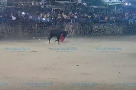 Presentarán exhorto contra la alcaldesa de Seyé por el 'torneo de lazo'