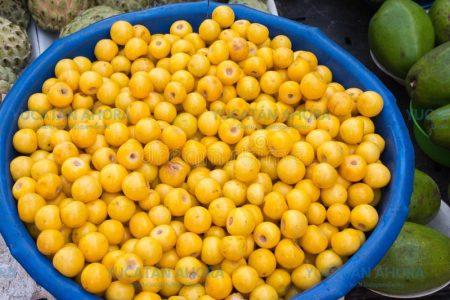 El nance, uno de los mejores antioxidantes… y crece en Yucatán