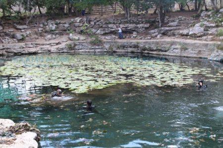 Desequilibrio ecológico en Yucatán por gente que se deshizo de peces 'feos' en acuarios