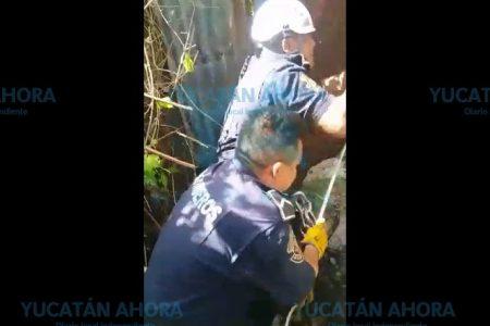Por perseguir a un gato, cae a un pozo habilitado como sumidero en el centro de Mérida