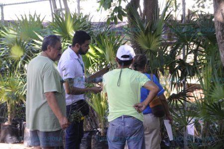 Especialistas en jardines botánicos de investigación se reúnen en Yucatán