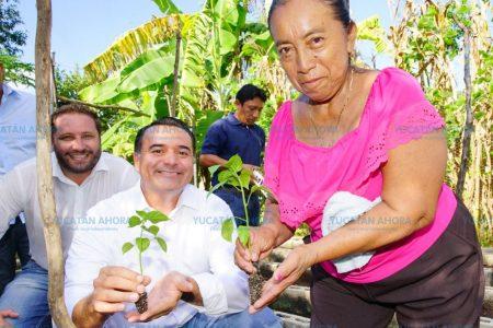 Mejorar el medioambiente dará mejor calidad de vida a los meridanos