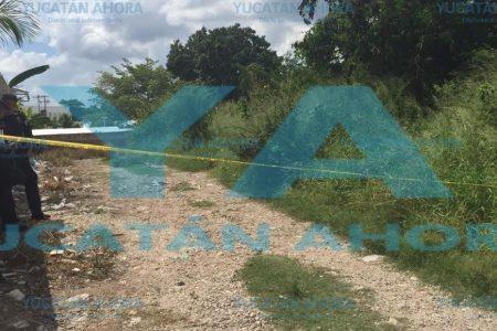 Tenía 16 años la mujer encontrada muerta en terreno baldío de la Salvador Alvarado