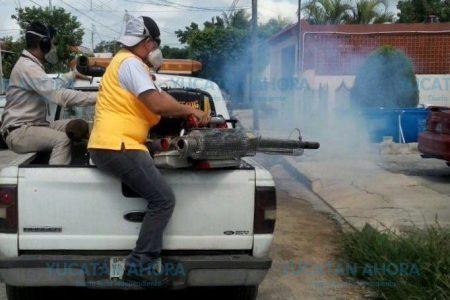 Aparecen dos nuevos casos de zika en Yucatán