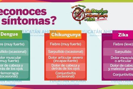 Después de dos años resurge el chikungunya en Yucatán