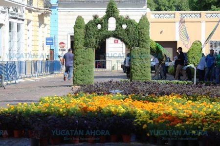 Llega el Camino de Flores del Día de Muertos con espectáculo multimedia