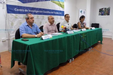 Yucatán, con muchos avances en biotecnología agrícola