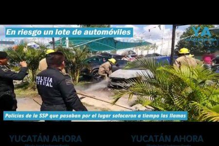 Policías evitan que se queme un lote de automóviles en Montecristo