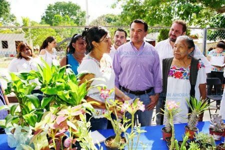 Se queda en Mérida el liderazgo para uno de los frentes de cuidado al medio ambiente