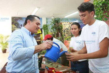 Lo producido y creado en Mérida, también se exhibe en la Feria de Xmatkuil