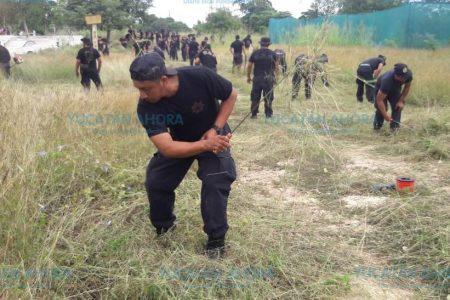 Cambian las armas por coas y machetes para prevenir el delito