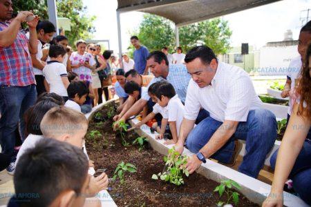 Desde niños inculcan la cultura sustentable y la convivencia