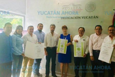 Certifican que empresas yucatecas son amigables con el medio ambiente