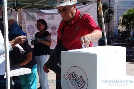 Yucatecos participan en la Consulta Nacional, en 58 casillas