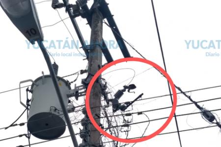 Denuncian que llevan casi dos días sin electricidad en La Amapolita