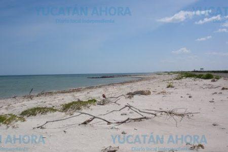 Venta de tierras nacionales a extranjeros, otro filón de oro para la mafia inmobiliaria costera
