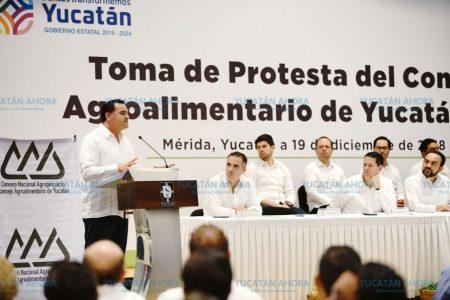 Planean cinturón alimentario que surta mercado interno en Mérida