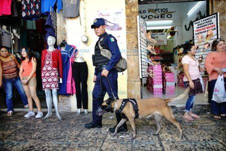 Policía Municipal de Mérida mantiene operativo decembrino