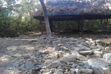 Devastaron manglar en área protegida por construir palapa y casa cerca de la playa