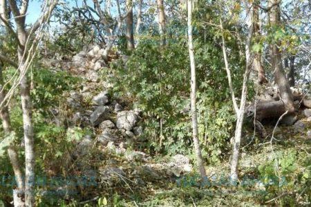 Irreparable pérdida arqueológica en Santa Gertrudis Copó
