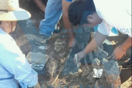 Ampliando el agua potable, hallan osamentas prehispánicas de mil 500 años