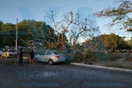 Vino de paseo a Mérida y tuvo un accidente al estilo Yucatán