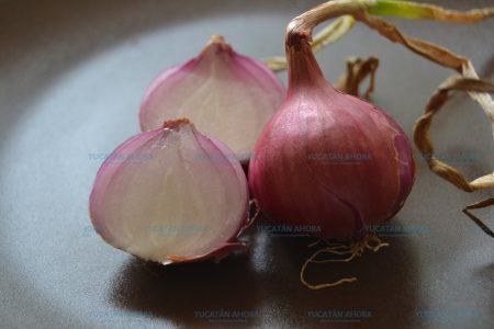 Consume cebolla, te ayuda a prevenir enfermedades cardiovasculares