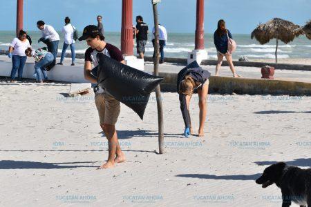 Festival de la Trova deja playa limpia en Sisal