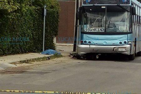 Trágico descuido de un motociclista en Ciudad Caucel