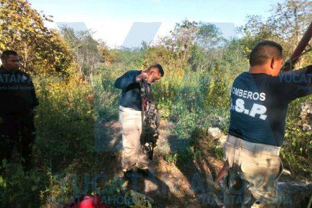 Rescatan borrego que cayó a un pozo de 25 metros