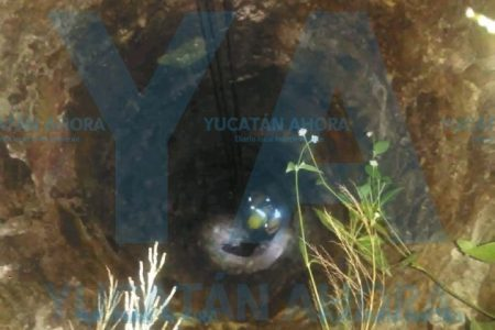 Rescatan perrito de un pozo de ocho metros de profundidad