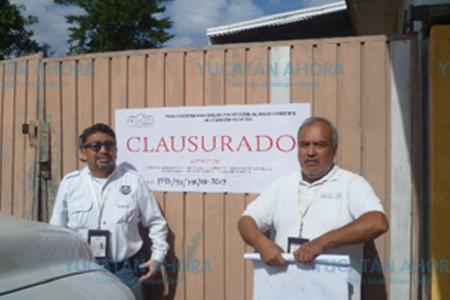 Clausuran bodega ilegal de madera en Mérida
