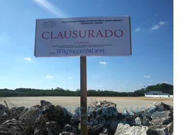 Destruyen manglares y rellenan humedales en Ría Lagartos
