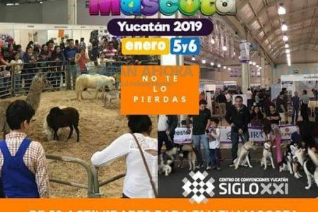 Todo listo para Expo Mascota 2019, este fin de semana