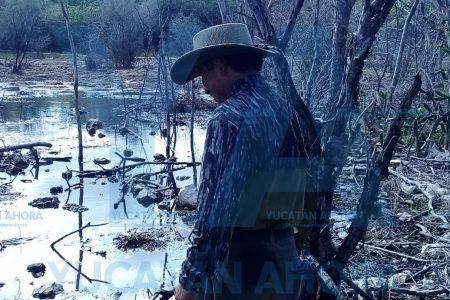 Kekén, en la mira del Consejo Maya del Poniente por la 'laguna negra' de Kinchil
