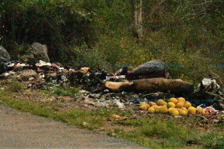 Vecinos de Peto, sin conciencia sobre el manejo de basura