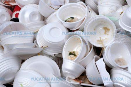 El PVEM quiere eliminar también el unicel en Yucatán