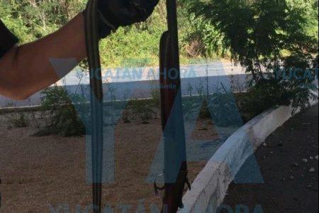 De rebote, cazador le pega un tiro a su joven acompañante