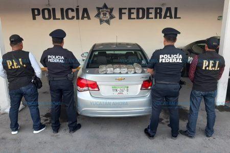 Aseguran seis paquetes de marihuana en la carretera Mérida-Cancún