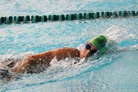Anuncian curso para entrenadores de natación