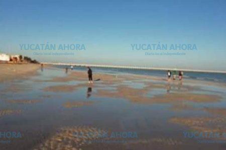 Asombroso fenómeno en Progreso: se aleja el mar varios metros