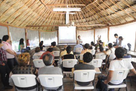 No les temas: los murciélagos son fuente de vida en Yucatán