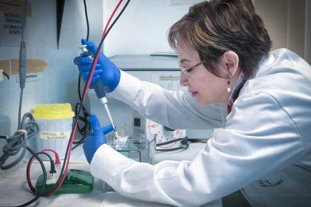 Investigadora del CICY dirigirá asociación científica regional