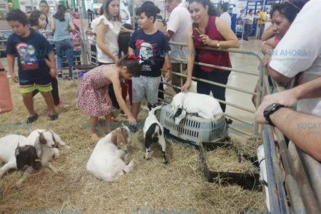 Con buena cosecha, concluye la Expo Campo 2019