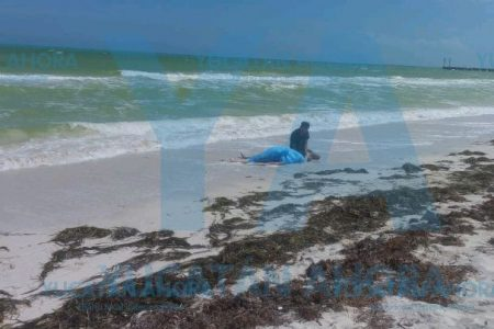 Se ahoga una turista en El Cuyo
