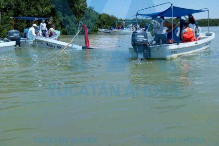 Chocan embarcaciones turísticas en Río Lagartos