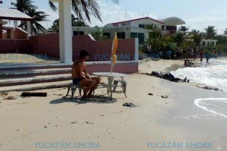 Denuncian a otro estadounidense que se 'apropia' de una playa